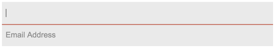 how to change form placeholder css